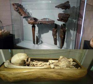 Puinen häränmuotoinen sarkofagi Pollencan museosta