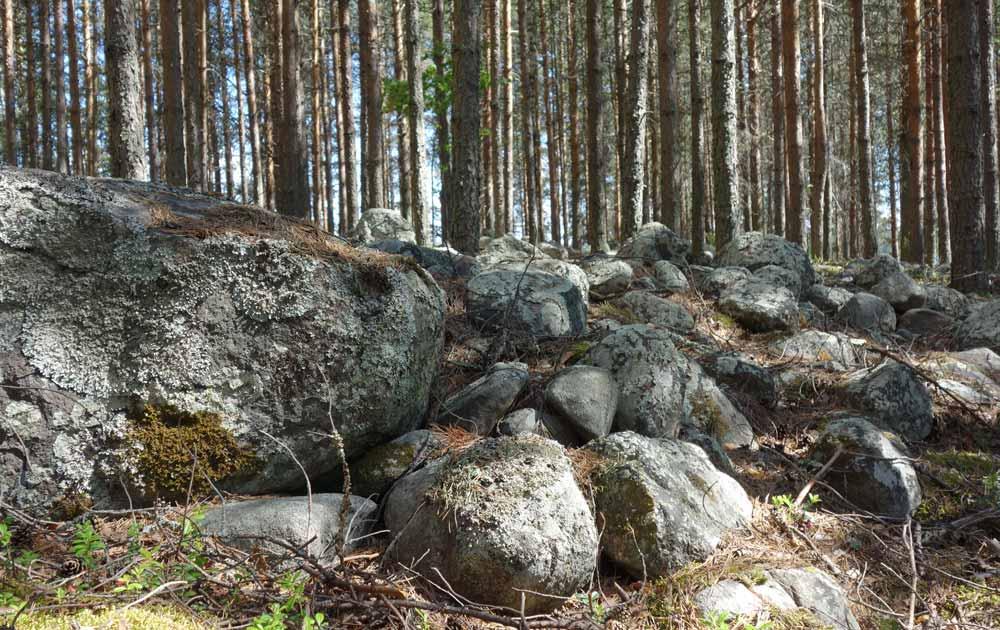 Kivistä ladottua matalaa kehävallia yksityskohtana