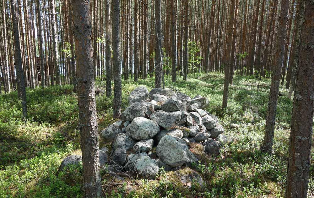 Jätinkirkon pohjoispuolella sijaitseva kiviröykkiö keskellä nuorehkoa mäntymetsää