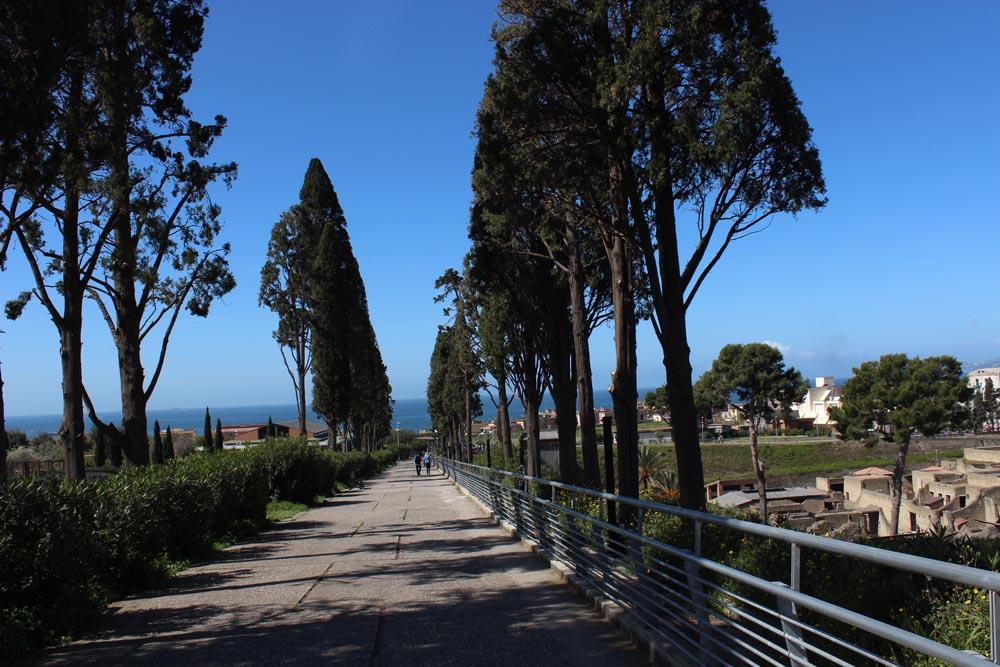Sypressien reunustama tie Herculaneumin arkeologiselle alueelle.