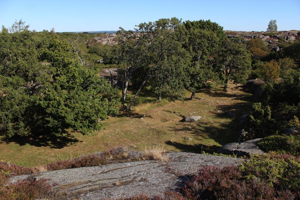 Otterböten asuinpaikka ylhäältä läheiseltä kalliolta nähtynä.