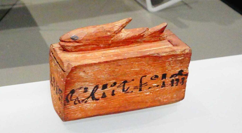 Muumioidun kalan puinen arkku.